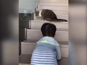安以轩分享带娃日常 66爬楼梯击退