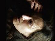 北影节《惊慌妈妈》获最佳影片 《红海行动》拿奖