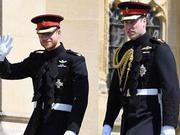 婚前不忘开玩笑 哈里王子抱怨裤子太紧