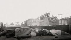 奥斯卡头号种子出现!《罗马》在威尼斯口碑爆了