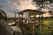 尚品生活|全球最美的8间树屋