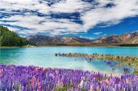 新西蘭蜜月旅游 不能錯過的7大魅力湖泊