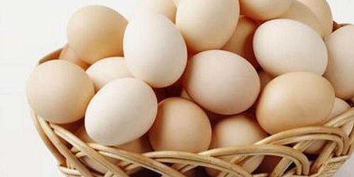 中小禽蛋养殖户亟盼饲料鸡蛋运输通畅