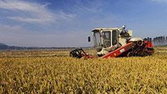 全国农业普查条例