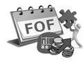 华夏基金投资总监阳琨:FOF并非一个简单的新产品
