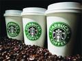 星巴克Costa和尼路咖啡所使用冰块含粪便细菌