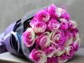 高端鲜花厄瓜多尔玫瑰登质检黑榜 因检出病毒被销毁