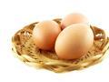 蛋价迎来反弹 期价冲高回落