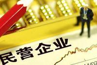 中共中央、国务院发布《支持民营企业改革发展意见》