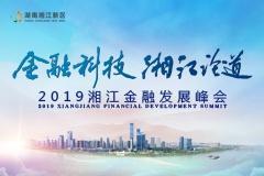 回顾:2019湘江金融发展峰会 中南大保险研究所所长刘冬姣