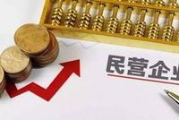 中央新政支持民企直接融资 专门对资本市场提出要求