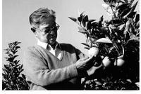 74岁借了1000多万承包了2000多亩荒山种甜橙
