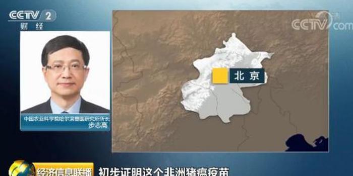 重大突破! 中国农科院发布一条好消息 有关猪瘟疫苗