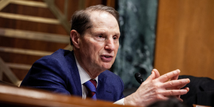 民主党重提资本利得税改革:变现时征税改为按年征收