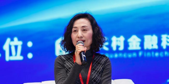陈蓓:一个银行除了战略之外应还要有企业架构