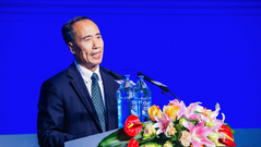 王兆星:扩大金融开放要与完善金融监管同行并重