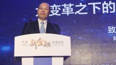 严文斌:金融业终极目标更重要的是构建高效金融体系