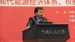 李佐军:推进市场化改革提高能源效率