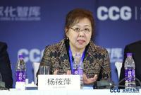 BP中国杨筱萍:外商投资法对外商投资具有里程碑意义