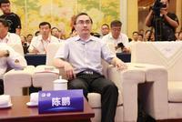 中规院陈鹏:济南先行区要跟雄安形成互补的关系
