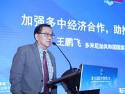 王鹏飞:为中国企业走进多米尼加提供支持