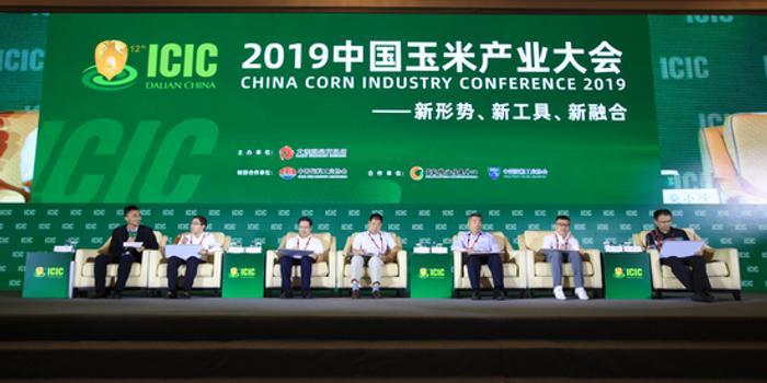 2019/2020中国玉米市场格局及价格走势