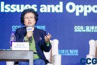 """陈文玲:中国有""""三感""""""""一度"""" 在中国97%的外企盈利"""
