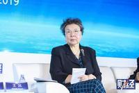 王沅:中国对外投资是新手 应尊重市场配合企业
