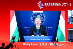 匈牙利國家銀行副行長:新冠危機下 銀行或面臨資產質量惡化