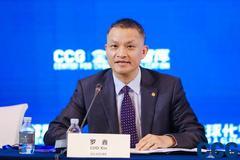 協鑫集成董事長羅鑫:2050年可再生能源將成為全球最大的能源載體