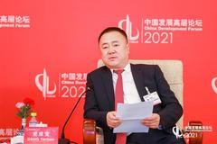 寧夏寶豐集團黨彥寶:用新能源替代化石能源是實現碳中和最佳路徑