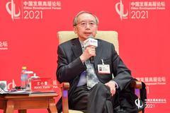 王小魯:中國經濟增長須把基礎放在內需 目前消費率仍然偏低