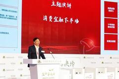 王濤:消費金融已到穩定階段 螞蟻金服、小米、平安已進入