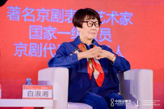 白淑湘:守住用好红色资源 传承红色基因