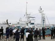 不顾国际社会批评 日本今起恢复商业捕鲸
