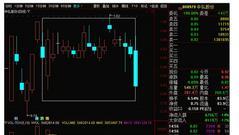 出逃或剩最后一天 中弘股份将成A股市场化退市第一股