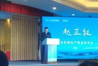 赵正挺:特色小镇是区域经济和乡村振兴的最重要抓手