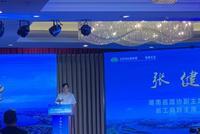 湖南政协副主席谈特色小镇:尊重市场规律 重视生态