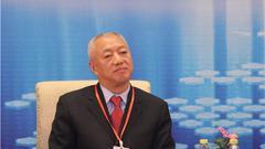 """凌文:希望中国在""""一带一路""""上输出最好的技术和管理"""
