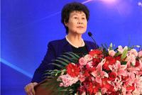 新疆乡都酒业有限公司董事长李瑞琴演讲