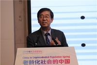 北京师范大学中国收入分配研究院执行院长李实