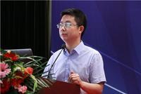 社科院张晓晶:大国发展与治理体系的完善
