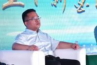 林涛:政府要在规划上做文章 承担主体责任