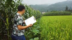 统计局负责人谈第三次全国农业普查:全面摸清三农新家底