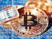 比特币分身BCC引异动 多平台指其山寨