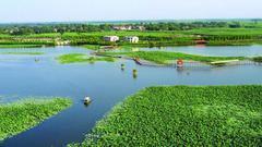 白洋淀面临水污染+缺水压力 雄安新区开启水环境治理市场