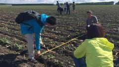 西线第三天:沿线玉米改种大豆现象明显 俄罗斯进口豆冲击待观察