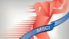 杨德龙:A股成功纳入MSCI成为行情启动催化剂