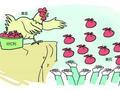 年中分红季到来 6月份82只公募基金分红25亿元