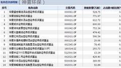 """神雾双熊5天闪崩30% 华夏基金遭遇""""滑铁卢""""大溃败(图)"""